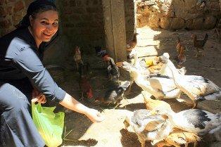 Micro-finance Project in Egypt-Empower 200 women