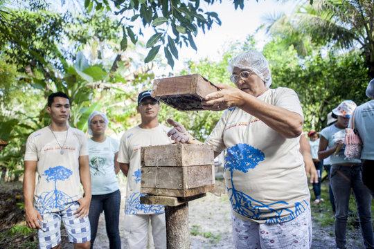 Peabiru's Beekeeping project