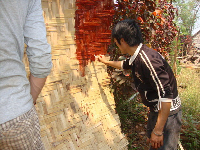 Painting to prevent insect destruction