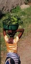 Bagamoyo Life