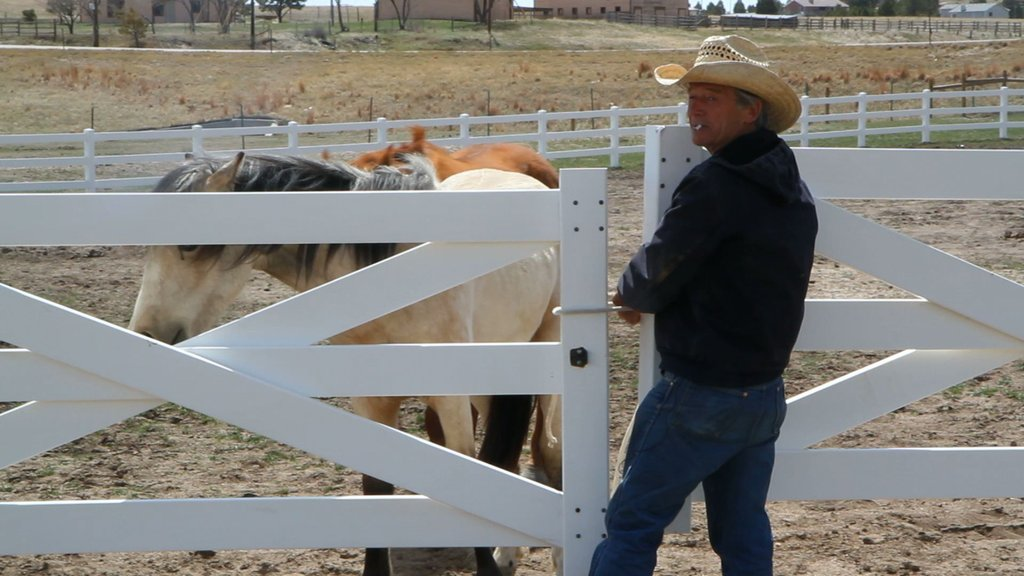 John Nash with therapy horse on Moon Fall Ranch