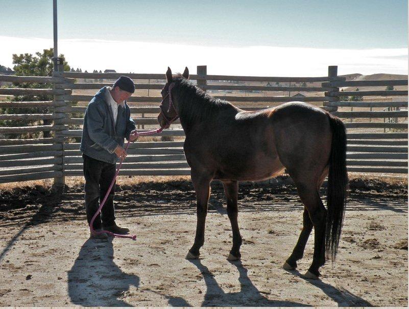 John Nash, Combat Veterans Cowboy Up