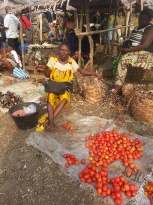 Melvis during market day