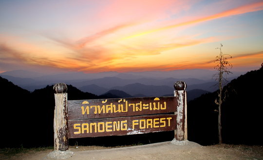 To the Hilltribes in Samerng Forest