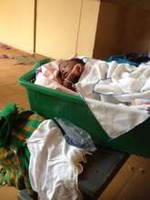 This girl's mother passed away while giving birth