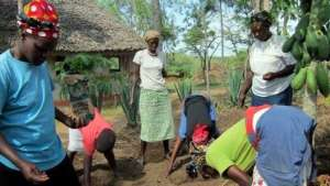 Women's Group planting moringa trees