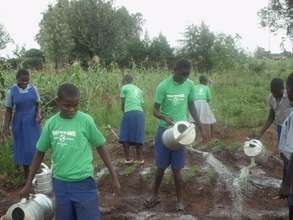 Youth group watering moringa trees