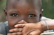 Combat Malnutrition in Kenya with the Moringa Tree