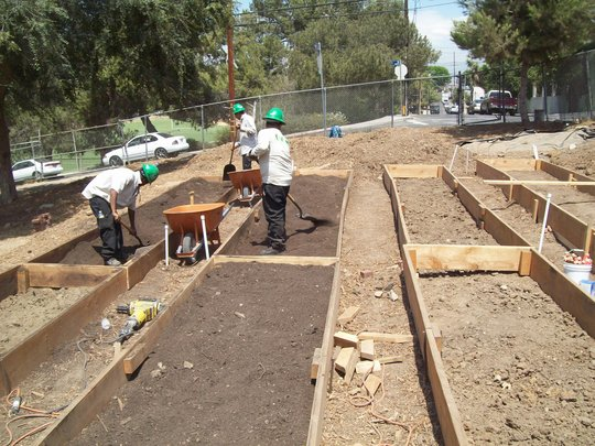 Corpsmembers fill completed garden beds