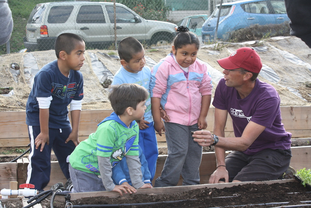 Kids learning to plant lettuce