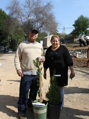 Community residents take trees to plant at home!