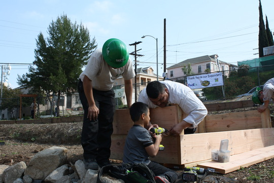 Staff member Carlos gets his son to help out!
