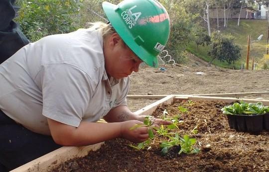 Kids planting radish seeds