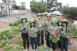 Corpsmembers harvest vegetables for the community