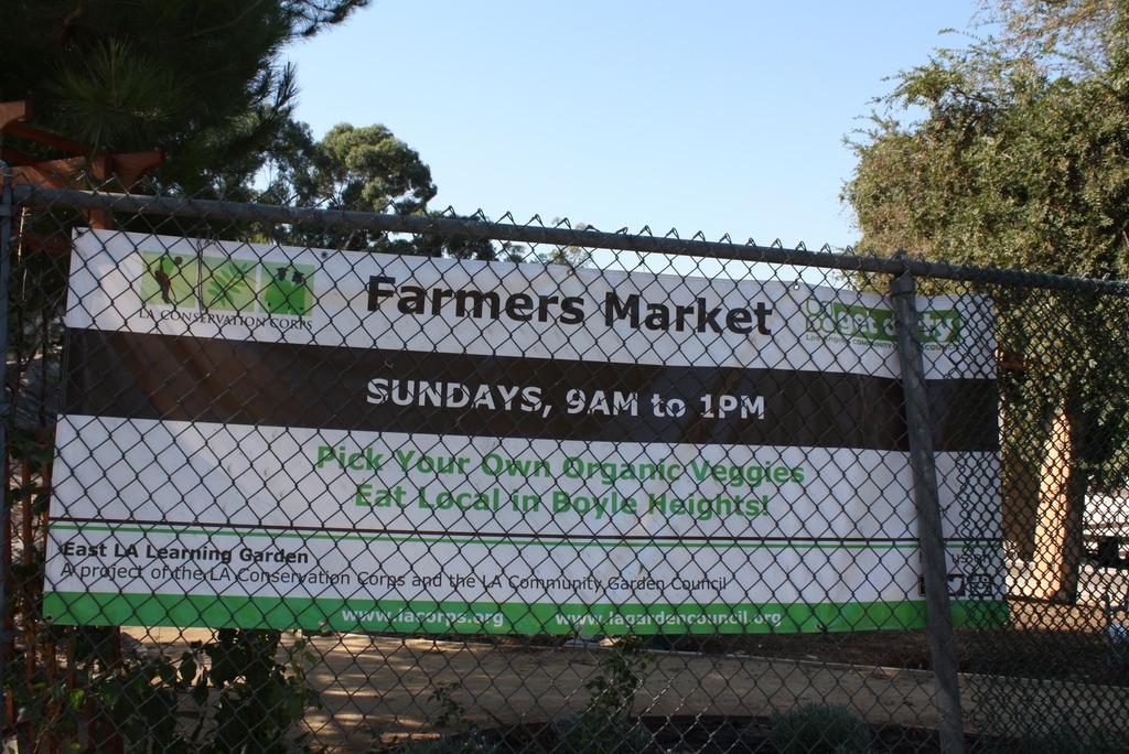 Sunday Market banner translation in English