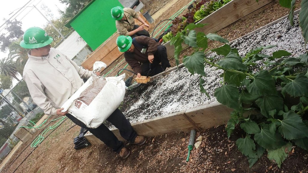 Corpsmembers working on our new garden beds