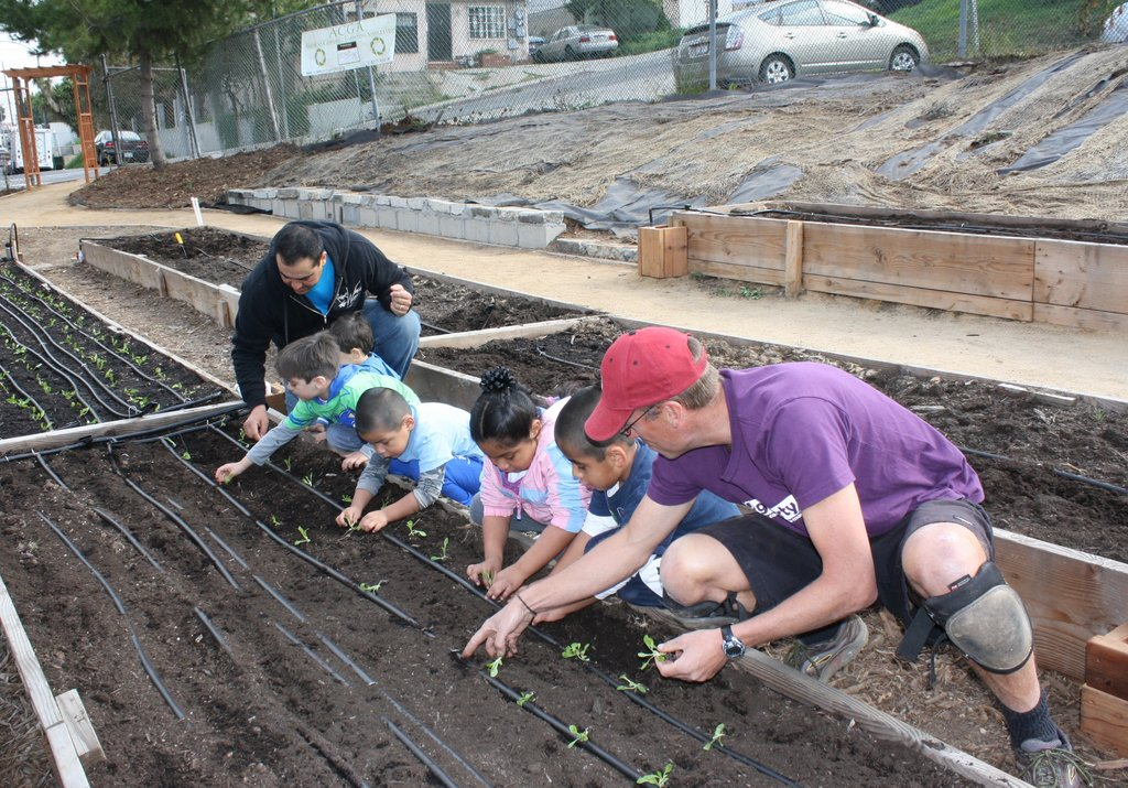 Build a Community Garden and Urban Farm in East LA