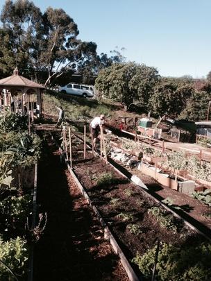 Spring gardening classes 4