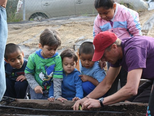 how to build a community garden