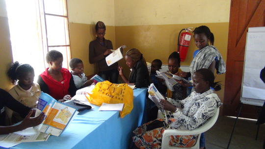 MGEF Students at Mentoring Workshop-December 2013