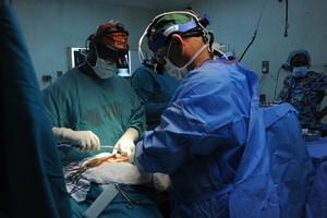 Corrective Surgery in Progress