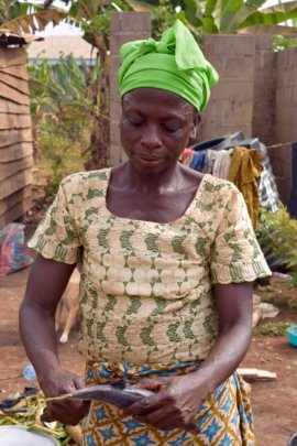 Healthy Diets for Healthy Communities in Cameroon