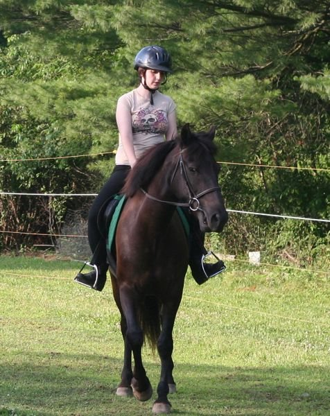 Provide Equine Therapies For 100 Children In Need