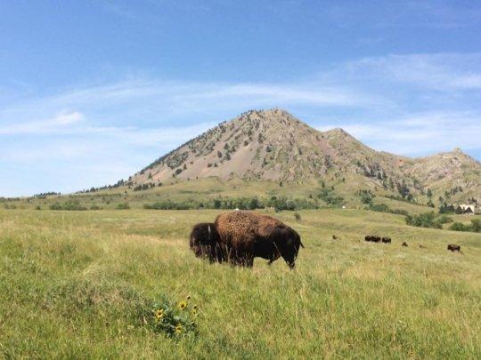 Journey to Mato Paha (Bear Butte) Sturgis, SD