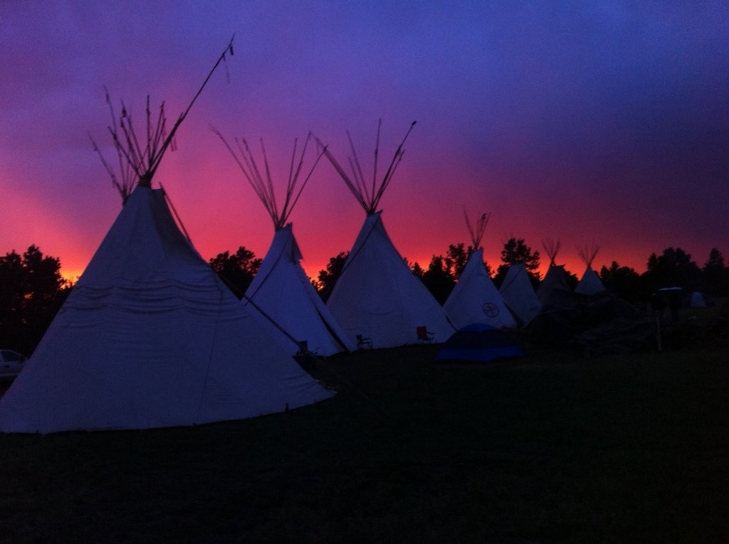 Reclaim land for buffalo and Lakota lifeways