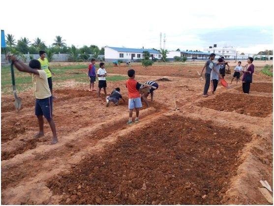 Farming at the campus