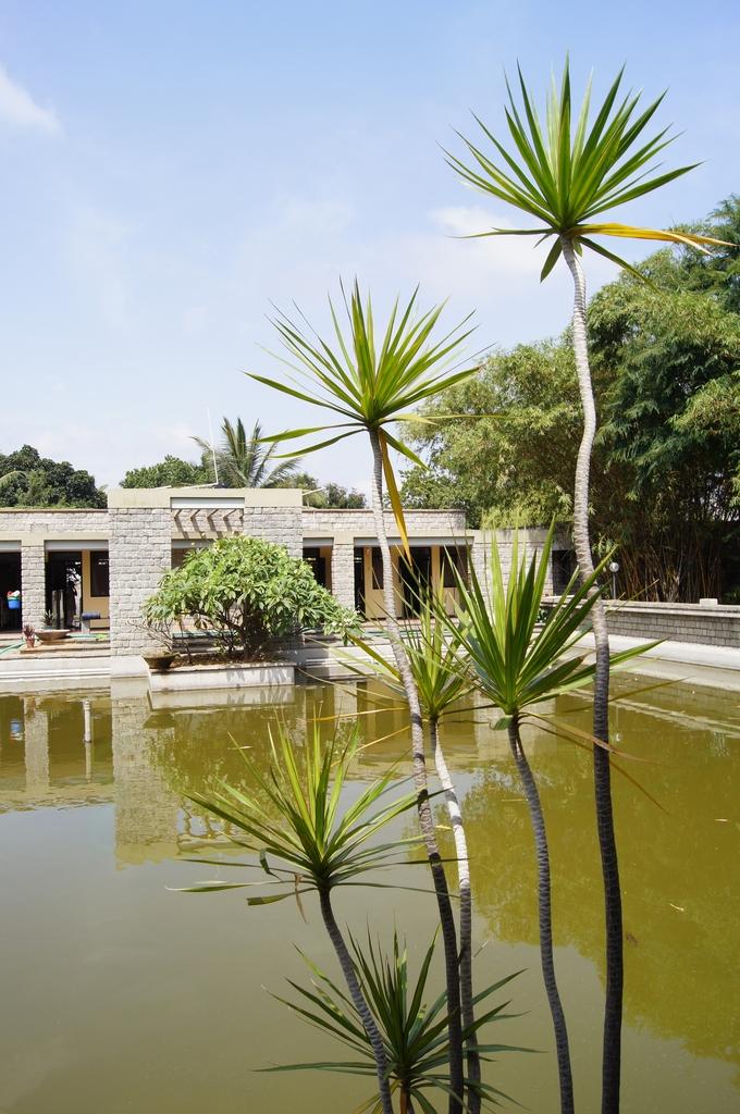 A View of Karunashraya