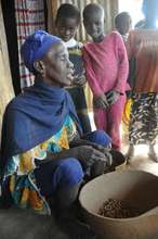Solar energy for 2,500 villagers in Salamale, Mali