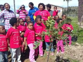 Tree planting day!