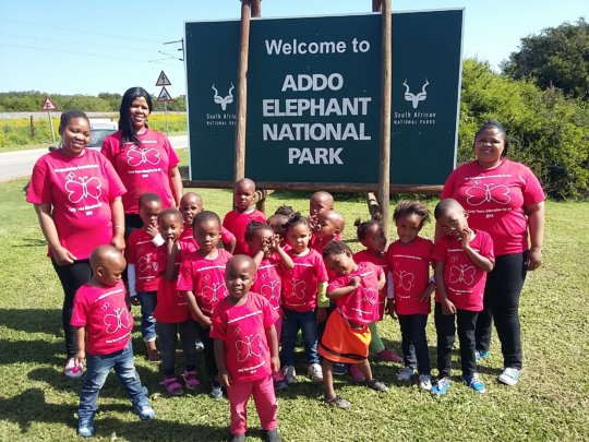 Visiting Addo National Elephant Park