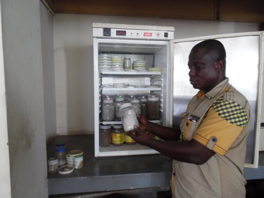 Self Help Young Adult Training Center in Ghana