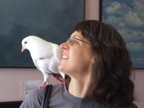 Claudette & I (Pigeons are amazing pets)