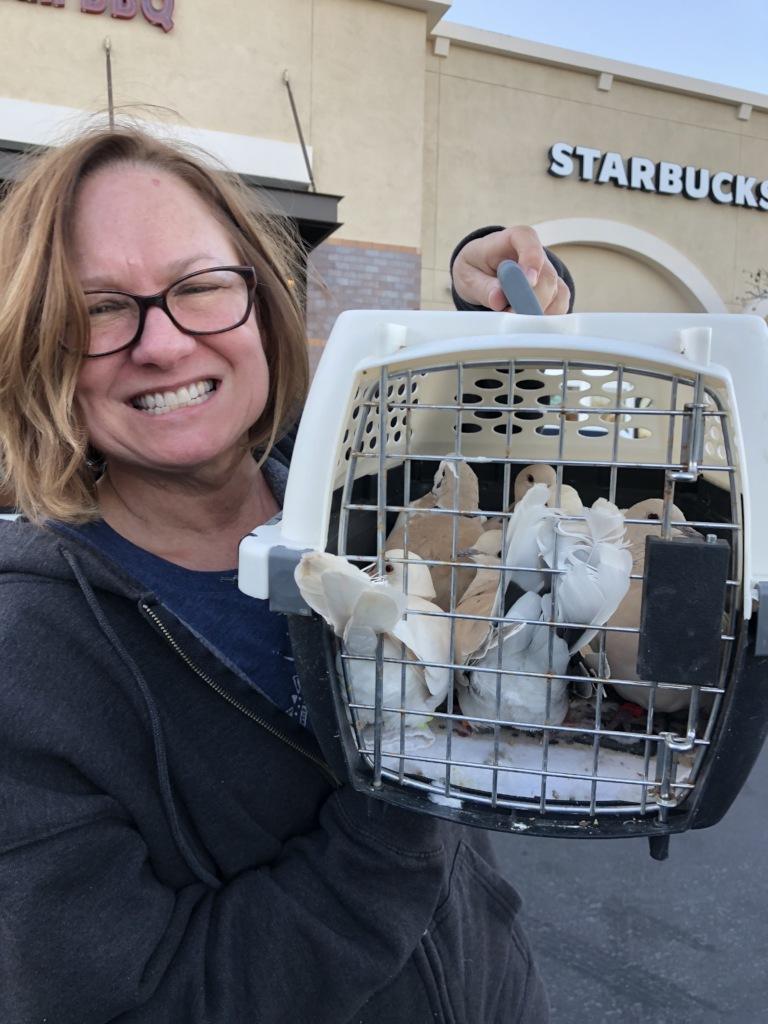 Palomacy hero Jill to the rescue!