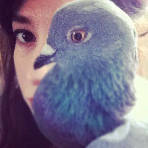 "MickaCoo volunteer Jaclyn took this portrait of herself and her foster pigeon Lopez. Lopez was raised in captivity but then """"set free"""". Lopez was unprepared to survive on his own and was emaciated and weak when he finally flew into an assisted living facility, desperate for human help."