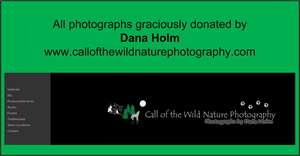 Dana Holm, Photographer