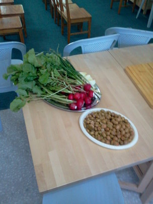 Vegetables from the organic garden