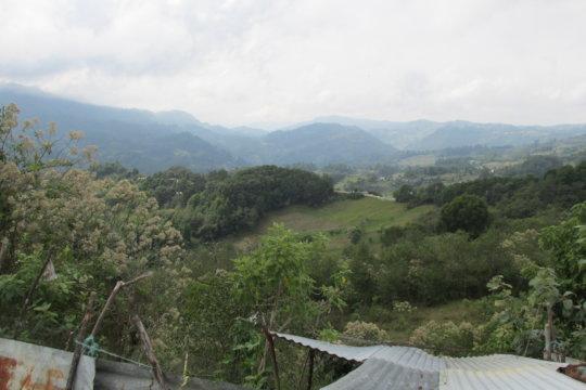 Beautiful green Chiapas