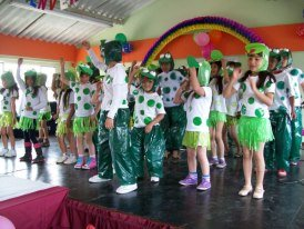 frogs dance (10 anniversary)