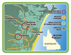 Mission Beach Cassowary (Wildlife) Corridors