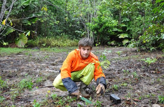 One Tree at a Time, Rainforest Rescue