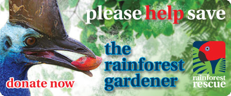 Save the Cassowary