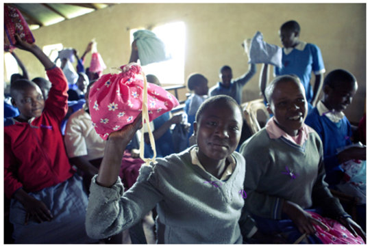 Teach Zimbabwe Women to Provide Feminine Hygiene