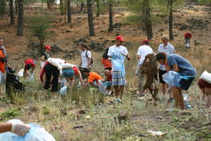 Volunteers cleaning the forest :)