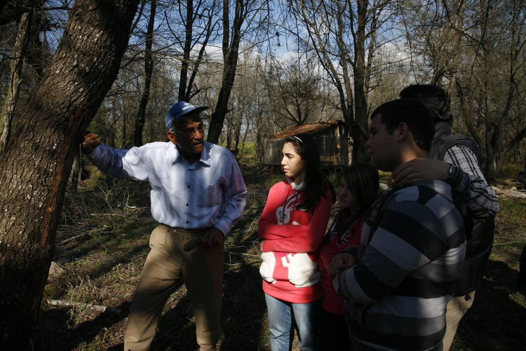 Revive 1000 hectares of the Mugla Sweetgum Forest