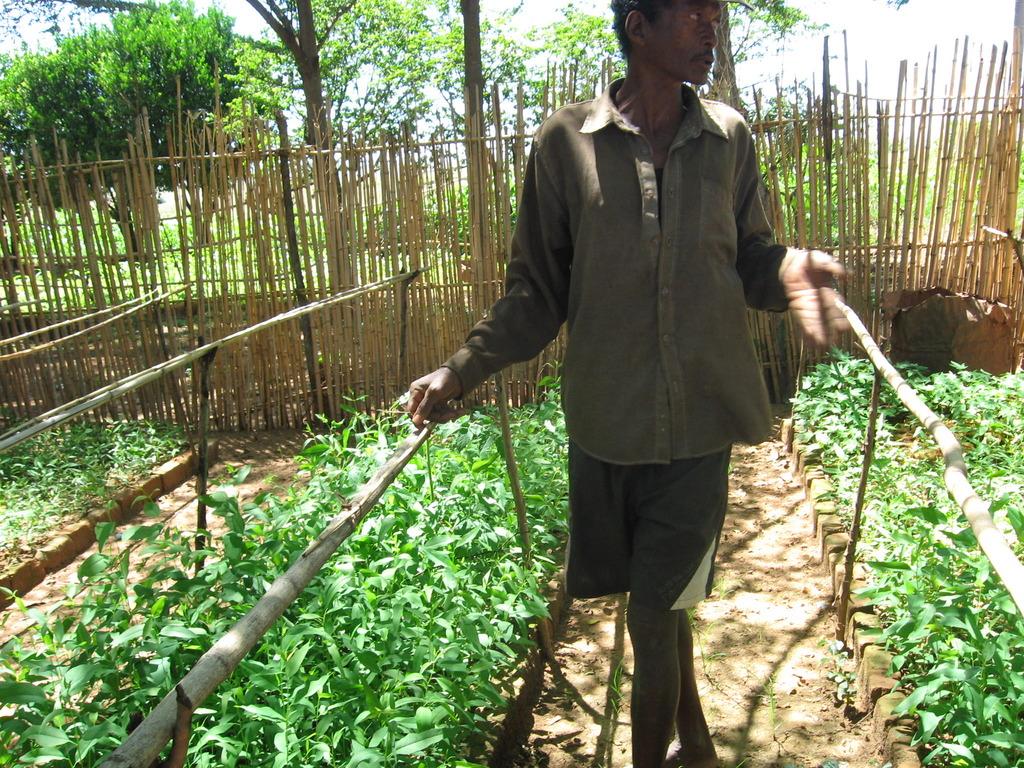 Our master gardener Jean