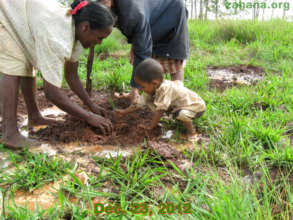 Planting trees for the next generation